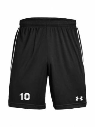 UA Men's Maquina 2.0 Short
