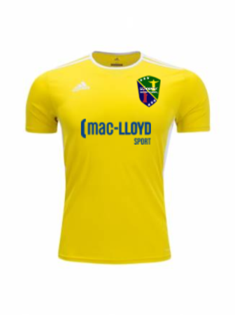 Adidas Men's and Youth Entrada 18 Jersey - Light Yellow