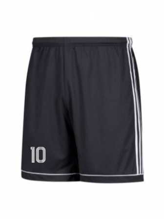 Adidas Adult and Youth 17 Squadra Short
