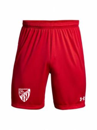 UA M's Golazo 2.0 Short