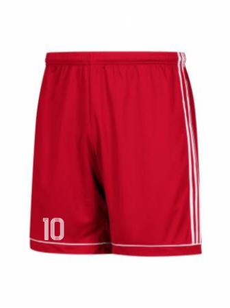 Adidas Men's and Youth 17 Squadra Short