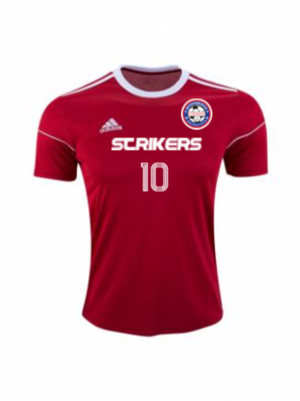Adidas Men's and Youth SS 17 Squadra Jersey
