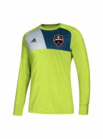 Adidas Men's Assita 17 GK Jersey - Lime