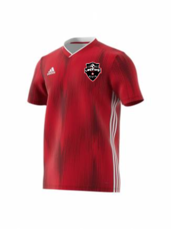 Adidas Men's Tiro 19 Jersey - AD Power Red/White
