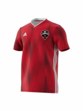 Adidas Youth Tiro 19 Jersey - AD Power Red/White