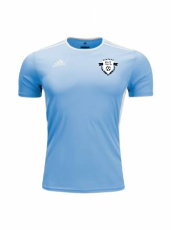 Adidas Men's and Youth Entrada 18 Jersey - AD Clear Blue