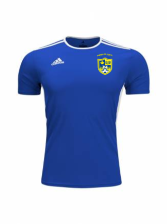 Adidas Men's and Youth Entrada 18 Jersey - AD Bold Blue