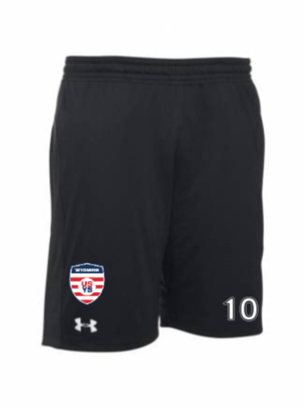 UA Men's Raid Short 2.0