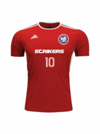 Adidas Adult and Youth Entrada 18 Jersey