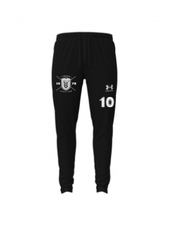 UA W's Challenger Training Pants