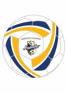 Wheat Ridge Avalanche Custom Ball
