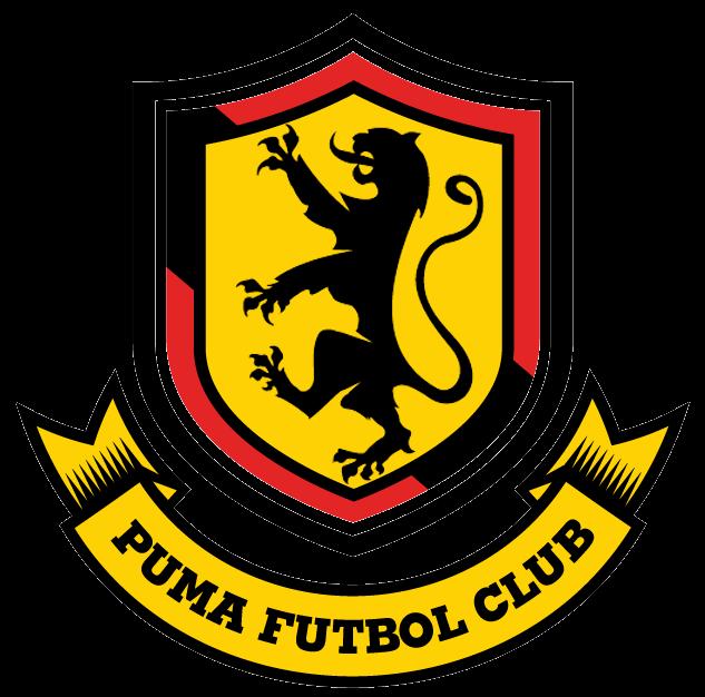 puma-futbol